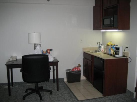 Holiday Inn Chicago-Carol Stream: Sink and counter in sitting room
