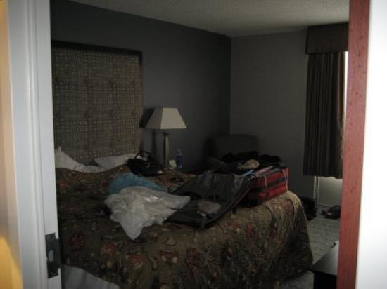 홀리데이 인 호텔 앤드 스위트 시카고-캐롤 스트림(휘턴) 사진