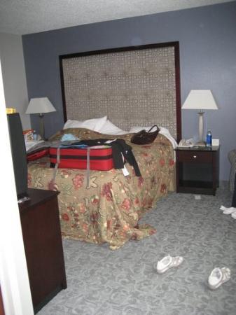 Holiday Inn Chicago-Carol Stream: bedroom