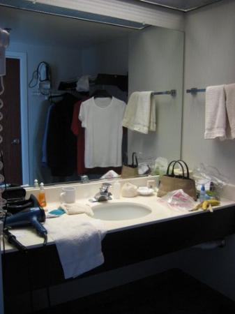 Holiday Inn Chicago-Carol Stream: bathroom- was clean