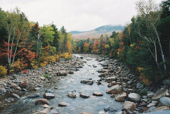 Kancamagus Highway Picture