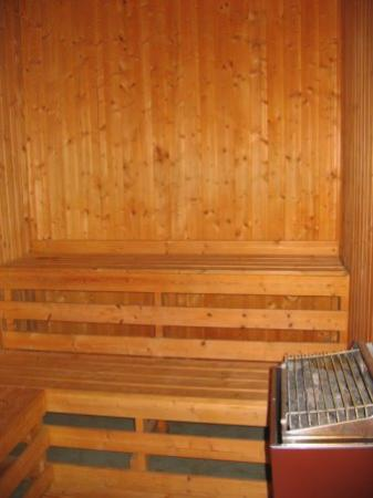 Eagles at Sugarbush: Sauna