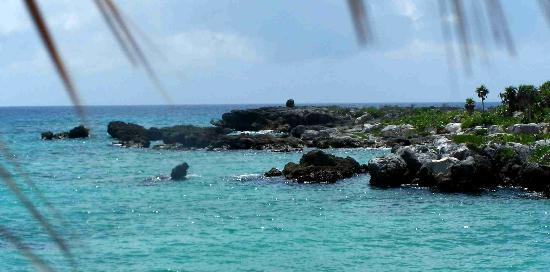 Valokuva: Riviera Maya