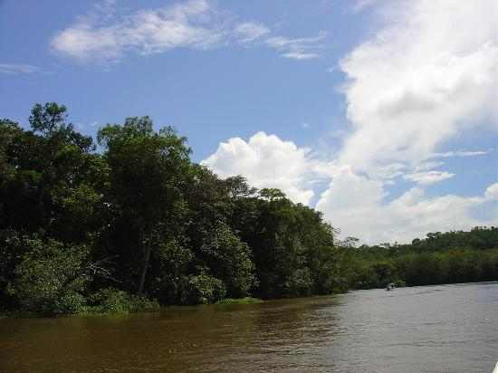 Corcovado National Park, คอสตาริกา: The River to Get There