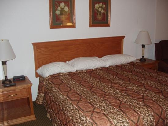 Drury Inn & Suites Lafayette: King bed