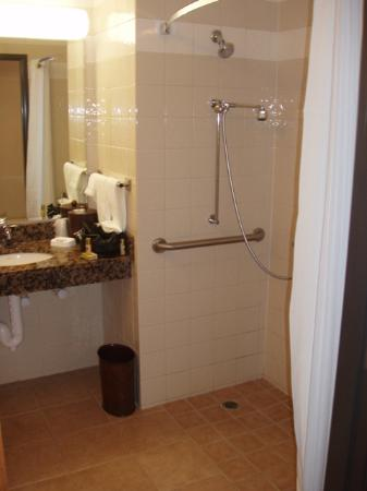 Drury Inn & Suites Lafayette: Roll in shower