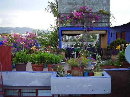 Villa maria updated prices reviews photos oaxaca for Design hotel oaxaca
