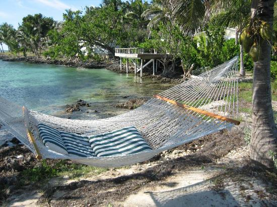 Bluff House Beach Resort & Marina: Hammocks are everywhere