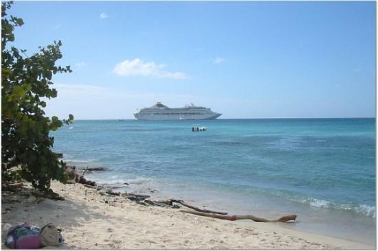 Punta Cana, Republik Dominika: Catalina Island -1