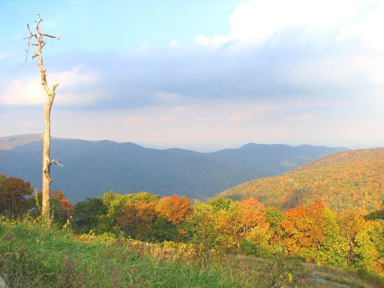 Piney Hill Bed & Breakfast: Skyline drive view