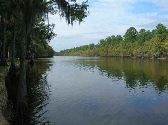 Old Mulberry Inn and Cottages: Caddo Lake Park