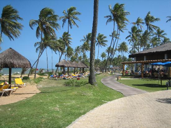 Iberostar Praia do Forte: Beach Area