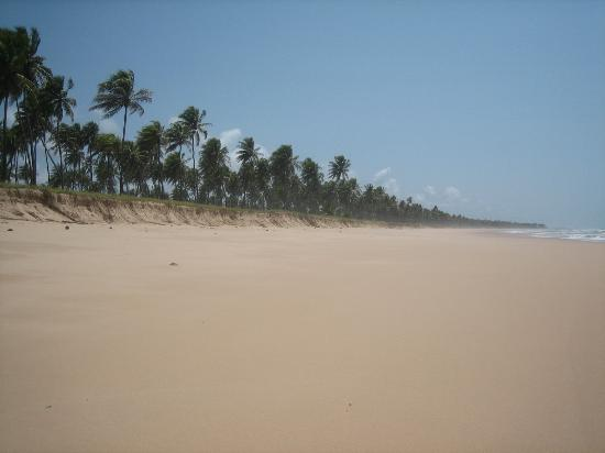 Iberostar Praia do Forte: Miles Of Empty Beach