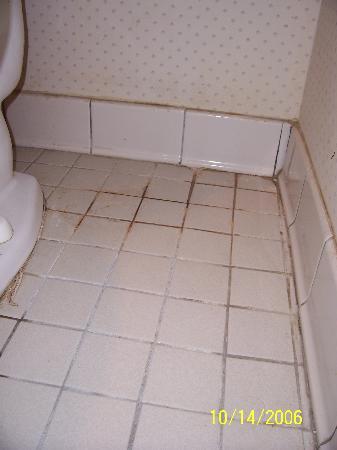 Days Inn Tupelo: Bathroom Floor