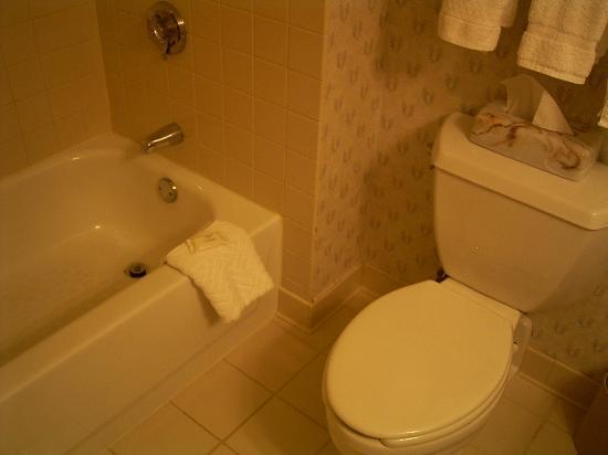 DoubleTree Club by Hilton Hotel Boston Bayside : Bathroom