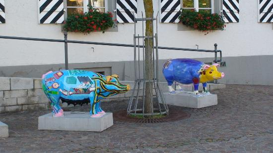 Baden-Wurttemberg, Germany: Town pigs