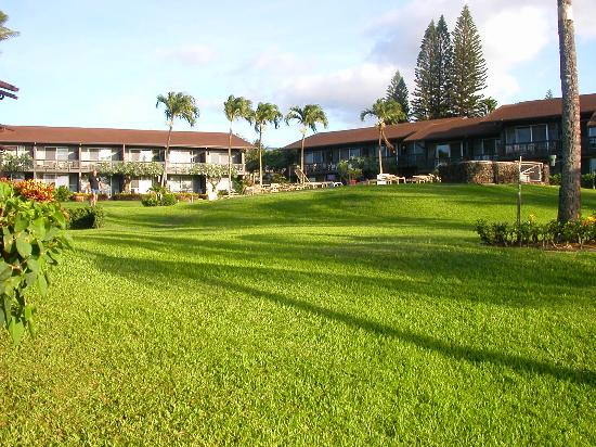 Mahina Surf: view of condos and lawn area