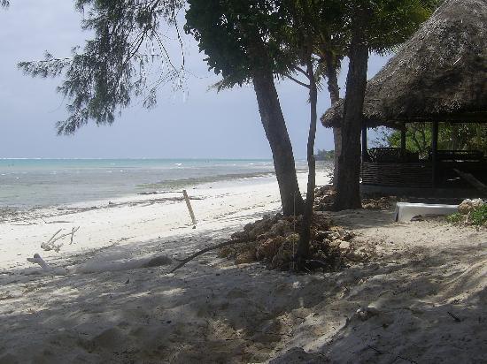 Kinondo Poa: beach