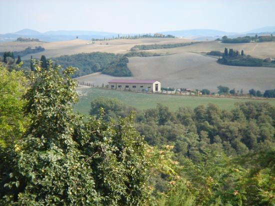 Il Giglio Hotel and Restaurant : Our hike along the white road to Pienza.
