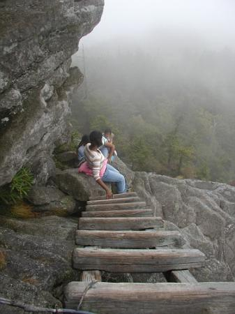 Grandfather Mountain: Ladder climb