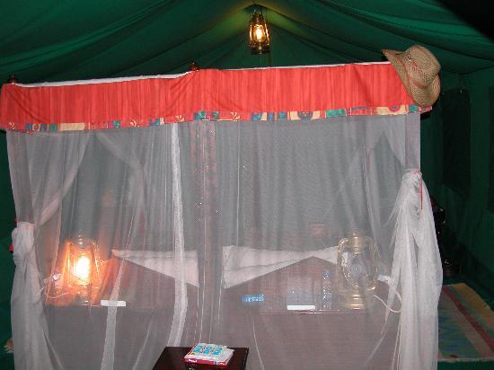 Fairmont Mara Safari Club: Inside the tent