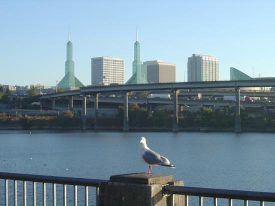 Bilde fra Portland