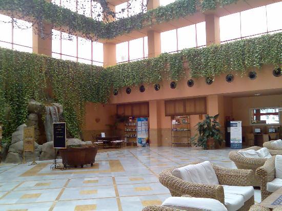 Almunecar Playa Spa Hotel: reception