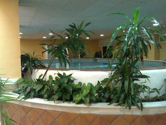 Almunecar Playa Spa Hotel: jacuzzi