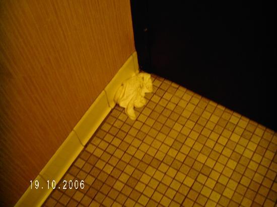 Teakwood Inn - Las Cruces: soiled washcloth behind bathroom door