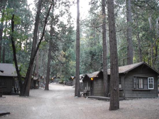 Curry village cabins picture of half dome village for Curry village cabins yosemite