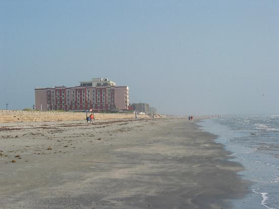 Holiday Inn Corpus Christi N Padre Island View Of The Hotel Further Down