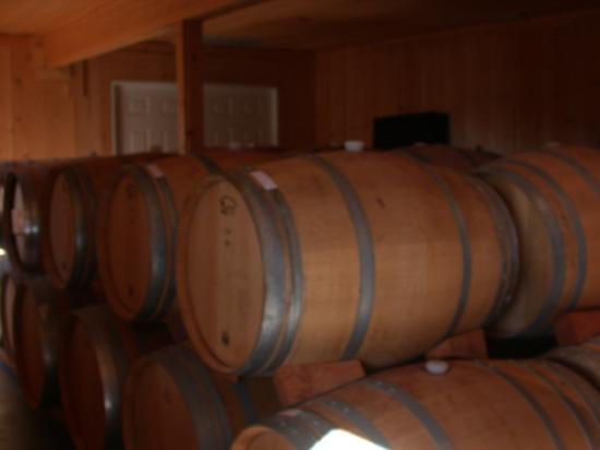 Dover Canyon Winery: Barrels of Wine at Dover Canyon