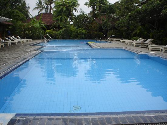 Bumi Ayu Bungalows: The Swimming Pool