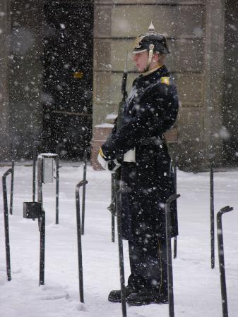 Stockholm, Sverige: gard on duty (in snowy conditions!)