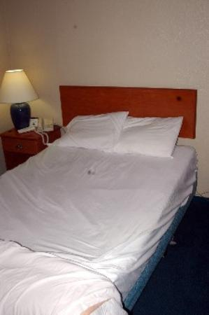 Good Nite Inn Sylmar: This is KIND SIZE? for what people