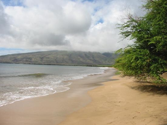 Isla de Hawai, Hawái: Clean beautiful beaches