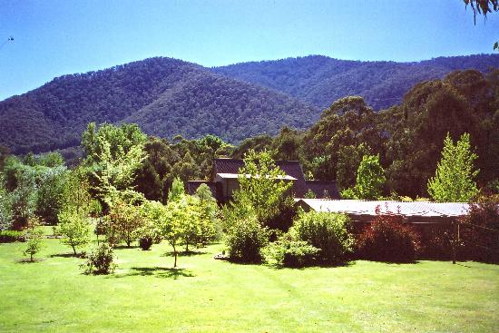 Harrietville, Australië: Shady Brook Gardens and Scenery