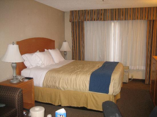 Best Western Plus Anaheim Orange County Hotel: King Suite Bed