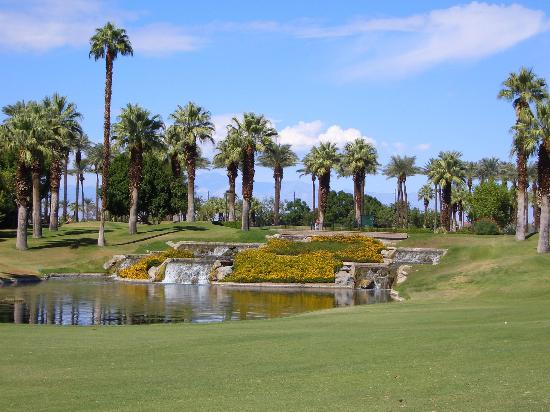 Palm and Valley Golf Courses at Desert Springs: Marriot Desert Springs (Palm Course)