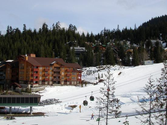 View of gondola from First Tracks Lodge
