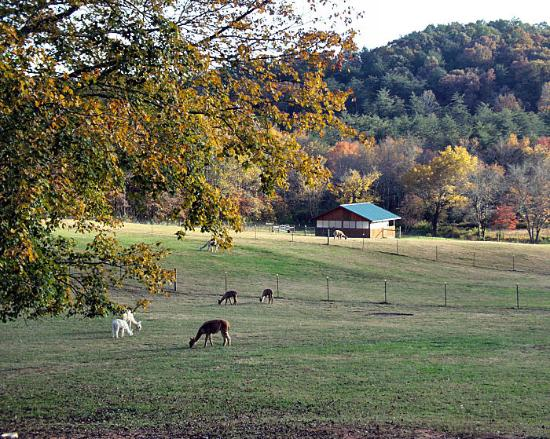 Photo of Sugar Creek Farm and Inn Blue Ridge