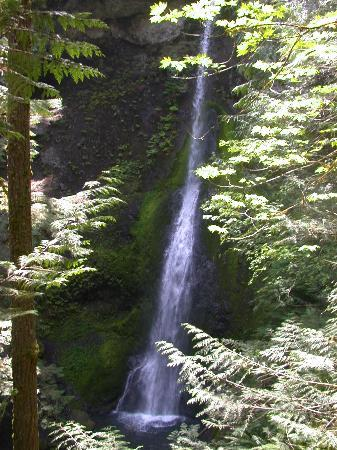 Olympic National Park, วอชิงตัน: Water fall