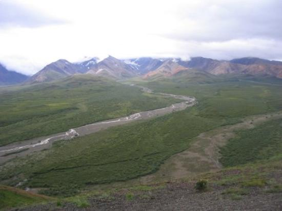 how to get to denali national park