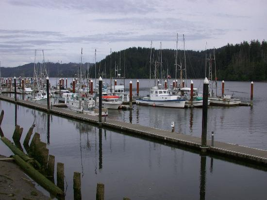 Oregon Bild