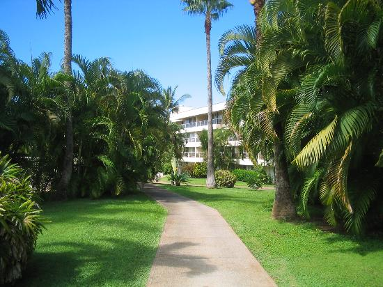 grounds picture of aston at the maui banyan kihei. Black Bedroom Furniture Sets. Home Design Ideas