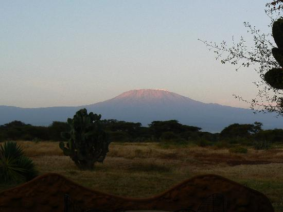 Amboseli Eco-system, Kenia: Dawn view of Kilimanjaro