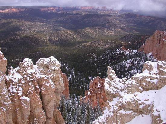 Bryce Canyon National Park Spring