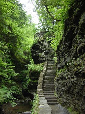 Watkins Glen, État de New York : Watkin Glenn Gorge Trail