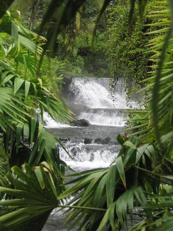 Nationalpark Vulkan Arenal, Costa Rica: Tabacon Hot Springs in Arenal