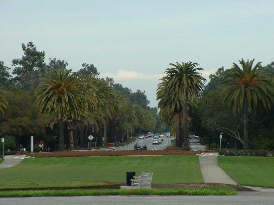 Foto de Palo Alto